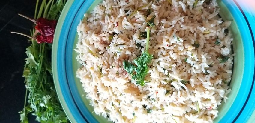 Tangy Chicken and coriander rice